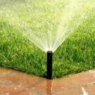 Whittemore Sprinkler Company image 1