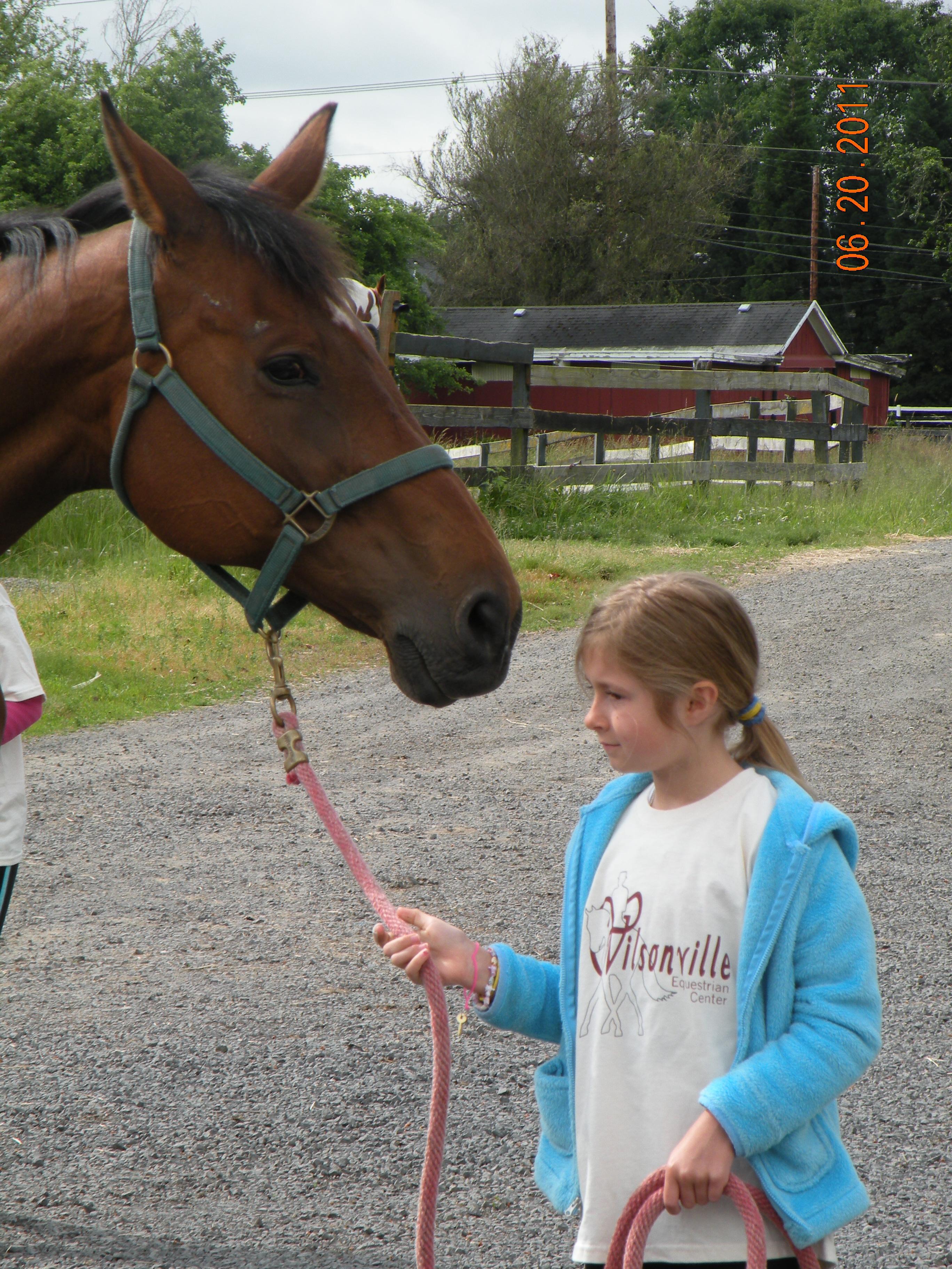 Wilsonville Equestrian Center