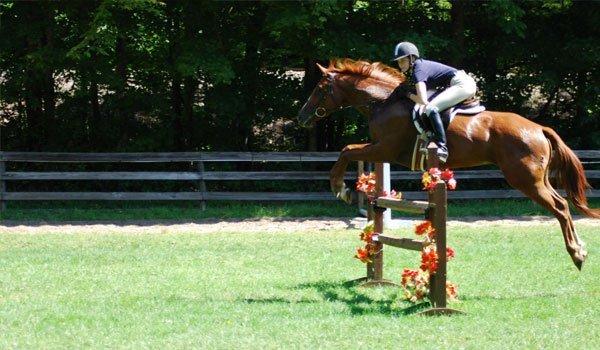 Whisper Wind Equestrian Center Inc image 5