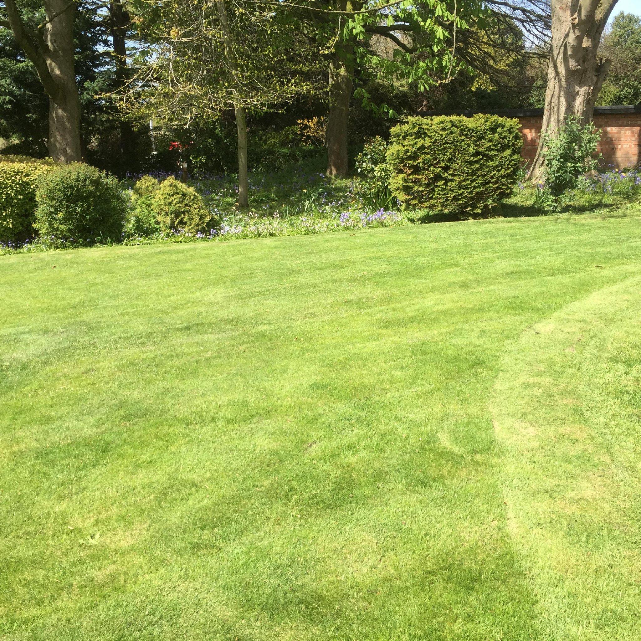 Edr landscapes landscape gardeners warrington united for Simply garden maintenance