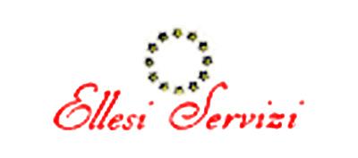 Ellesi Servizi Impresa di Pulizie