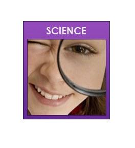 Study Wizards Tutoring image 2