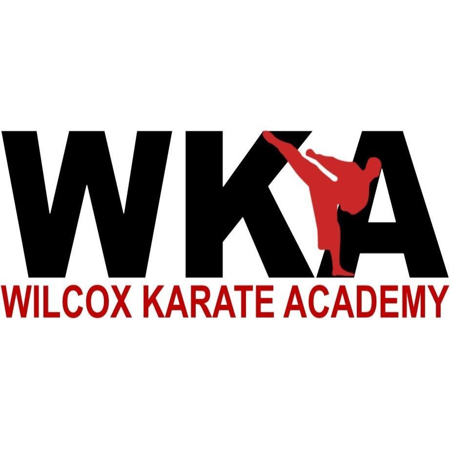 Wilcox Karate Academy - Independence, MO 64055 - (816)659-7777 | ShowMeLocal.com