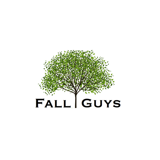 image of the Fall Guys LLC