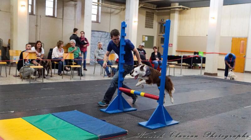 Centre Sportif Canin Enr- Les 4 Pattes en Folies à Québec