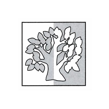 Akazien-Apotheke
