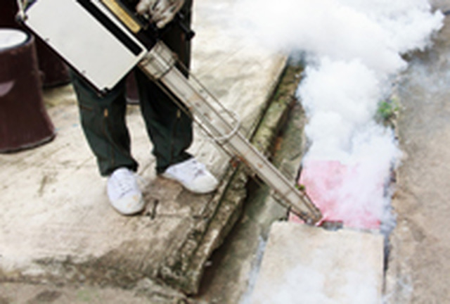 Home garden cleaning services in oldbury upon severn for Garden cleaning services