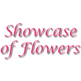 Showcase Of Flowers/Gainers Four Seasons
