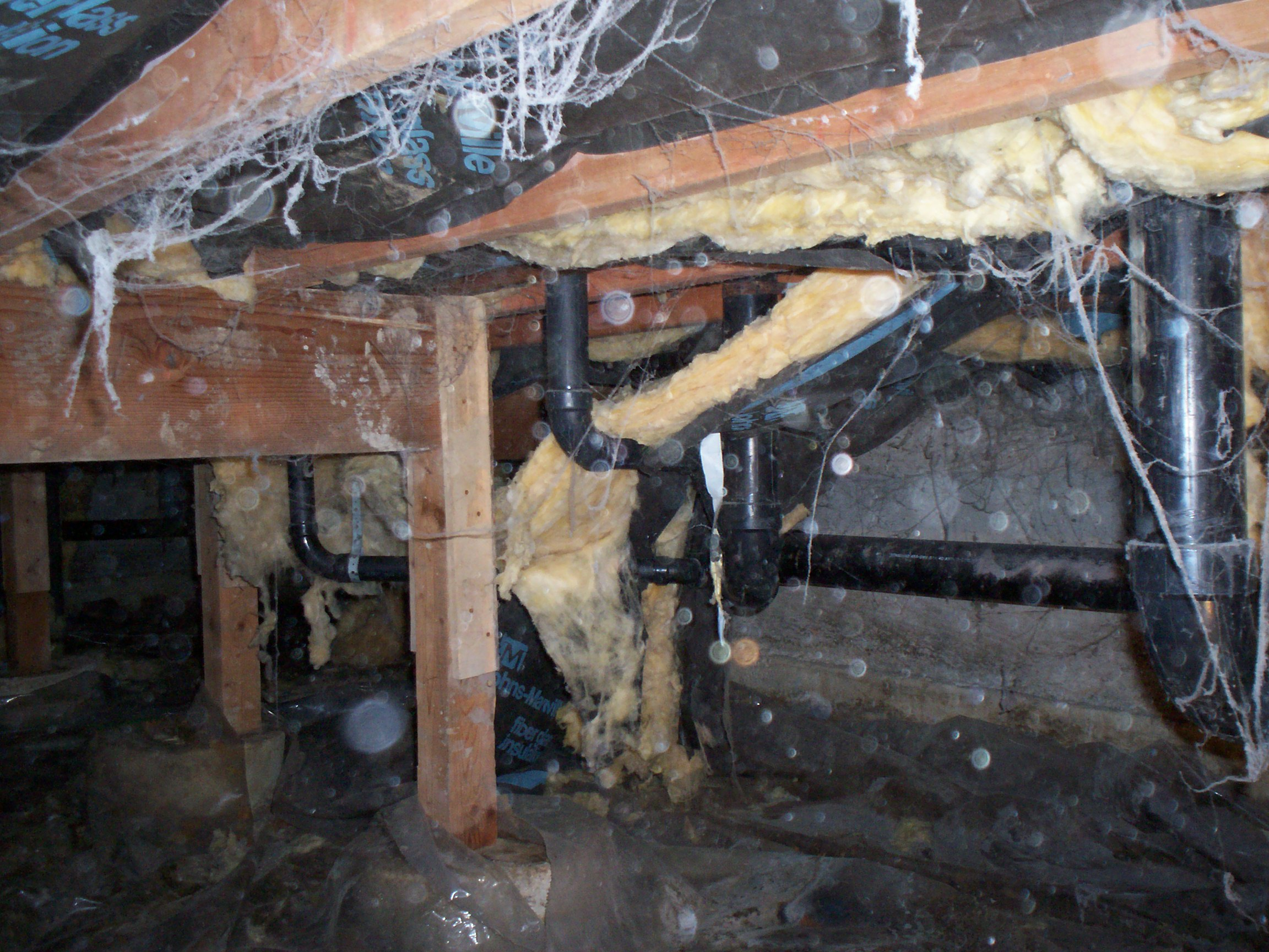 Clean Crawls – Insulation Install & Removal: Seattle image 1