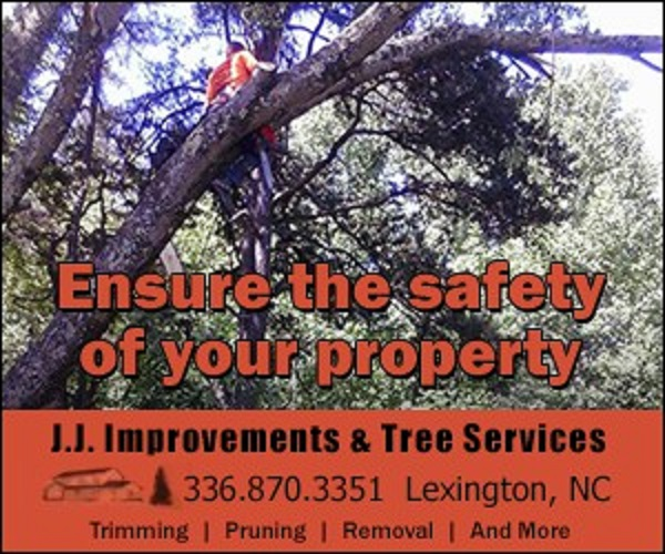 image of the J. J. IMPROVEMENTS & TREE SERVICES