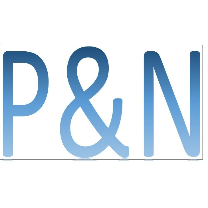 P & N CONSULTING INC