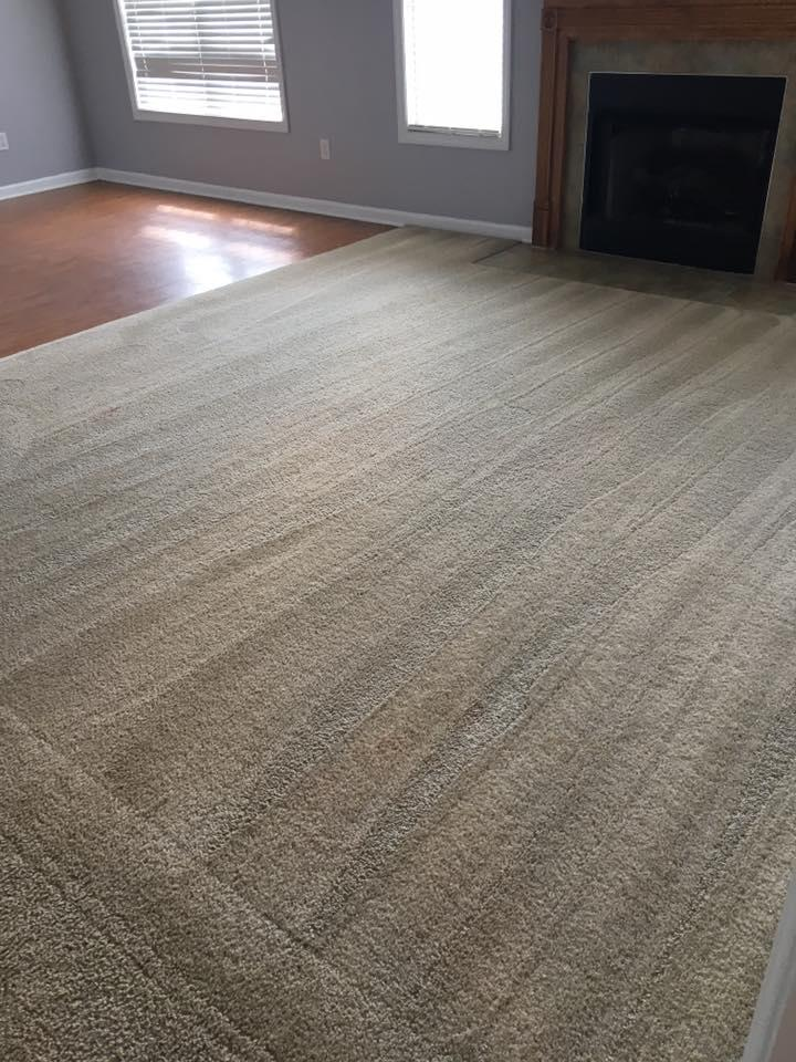 Stains Be Gone Carpet Cleaning, LLC image 7
