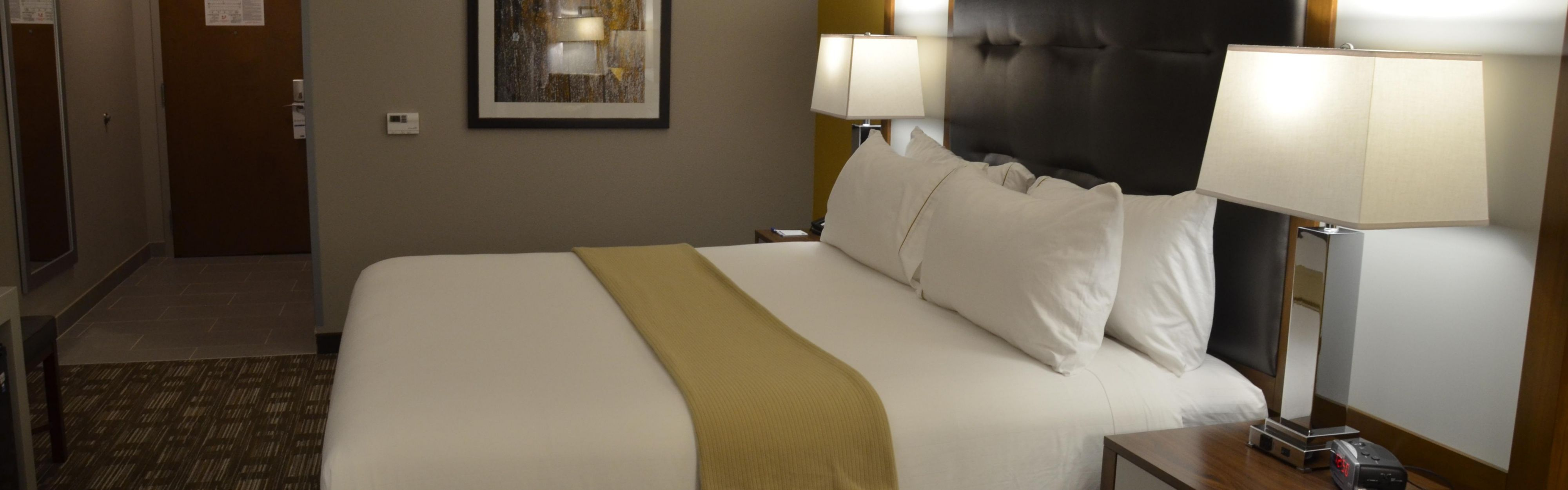 Holiday Inn Express & Suites Albany image 1
