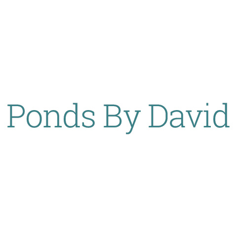 Ponds by david coupons near me in 8coupons for Pond companies near me