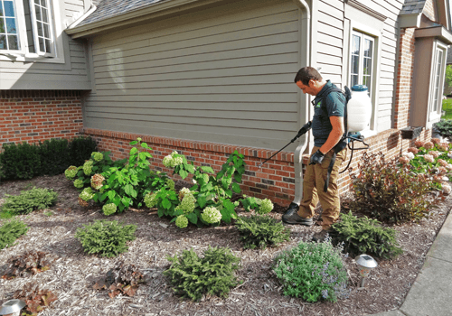My Fertilizing Company In Whitepages