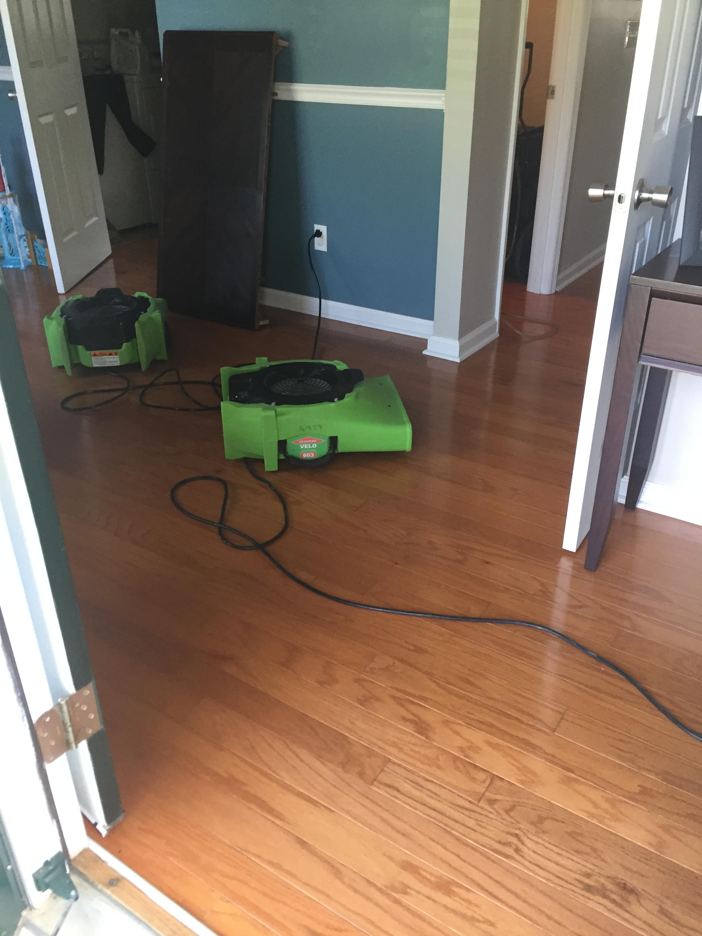 SERVPRO of East Raleigh/Zebulon image 0