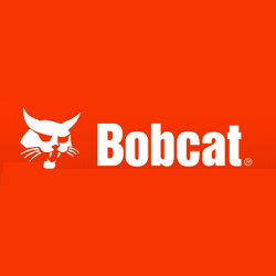 Bobcat of the Rio Grande Valley