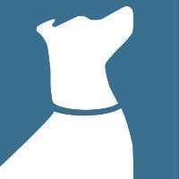 Instinct Dog Behavior & Training LLC