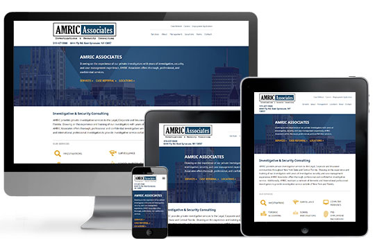 ACS Web Design & SEO image 1