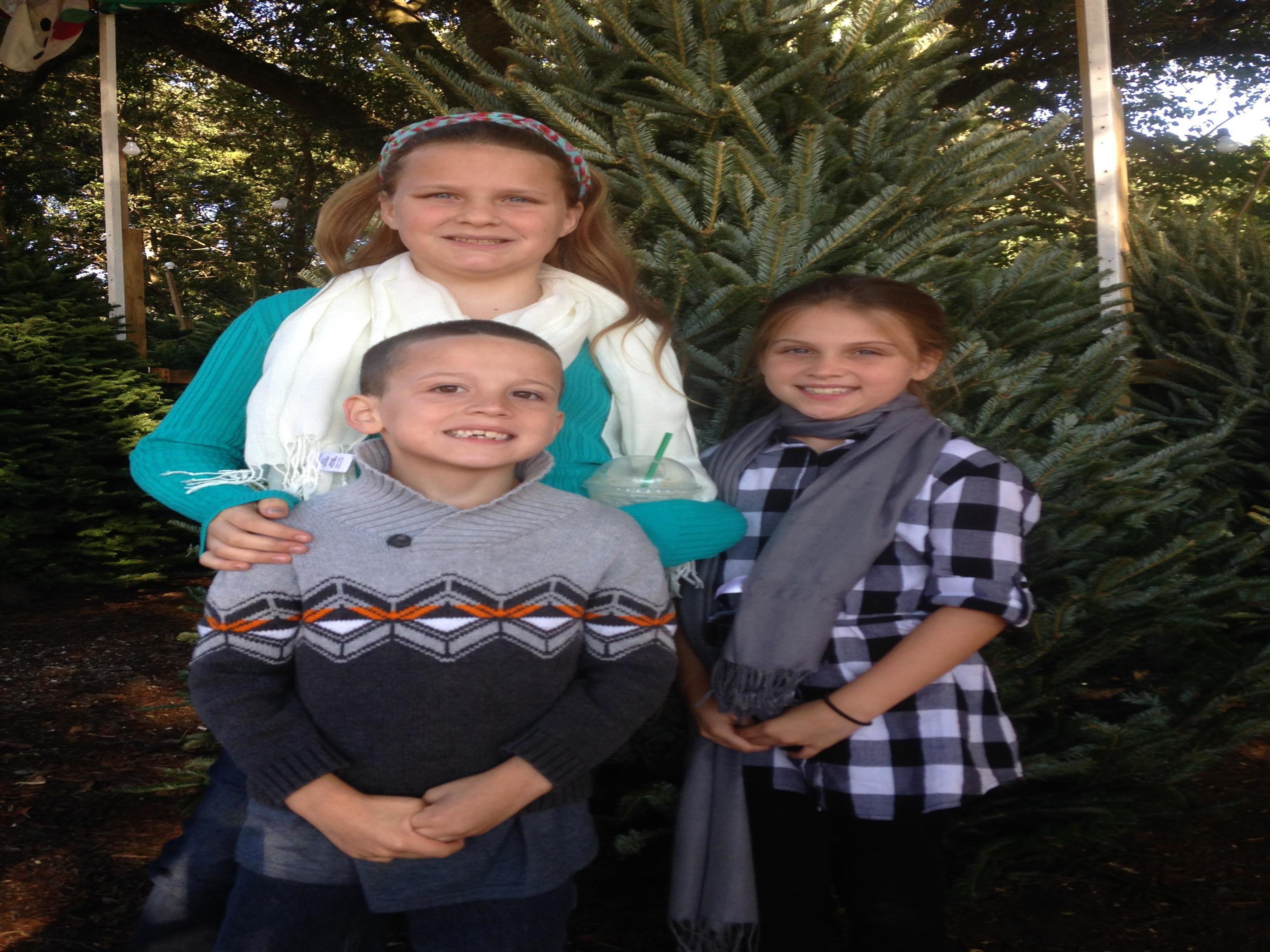 Dave's Christmas Tree Lot image 28