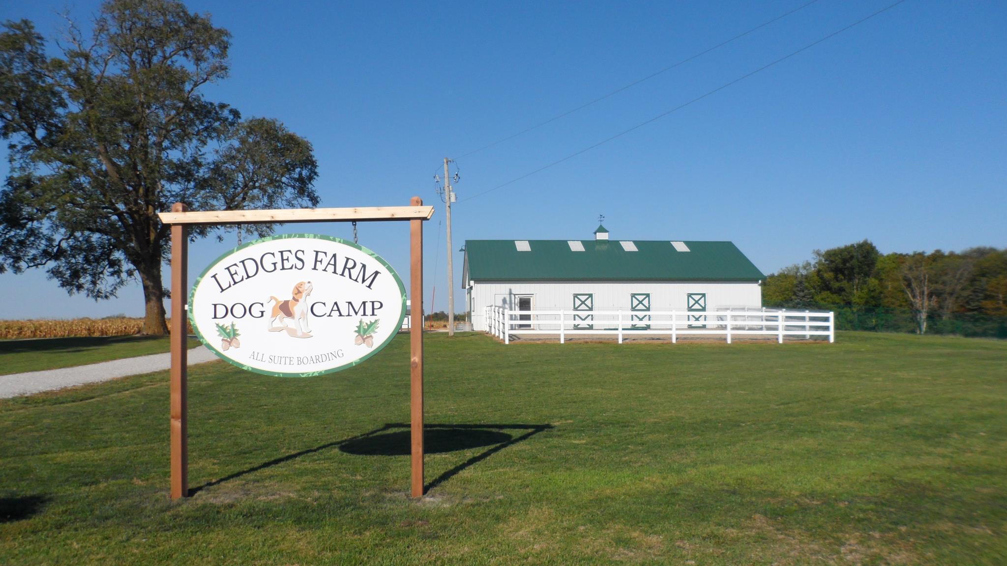 Ledges Farm Dog Camp image 12