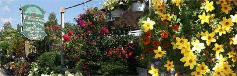 Tony Distefano Landscape Garden Center image 0