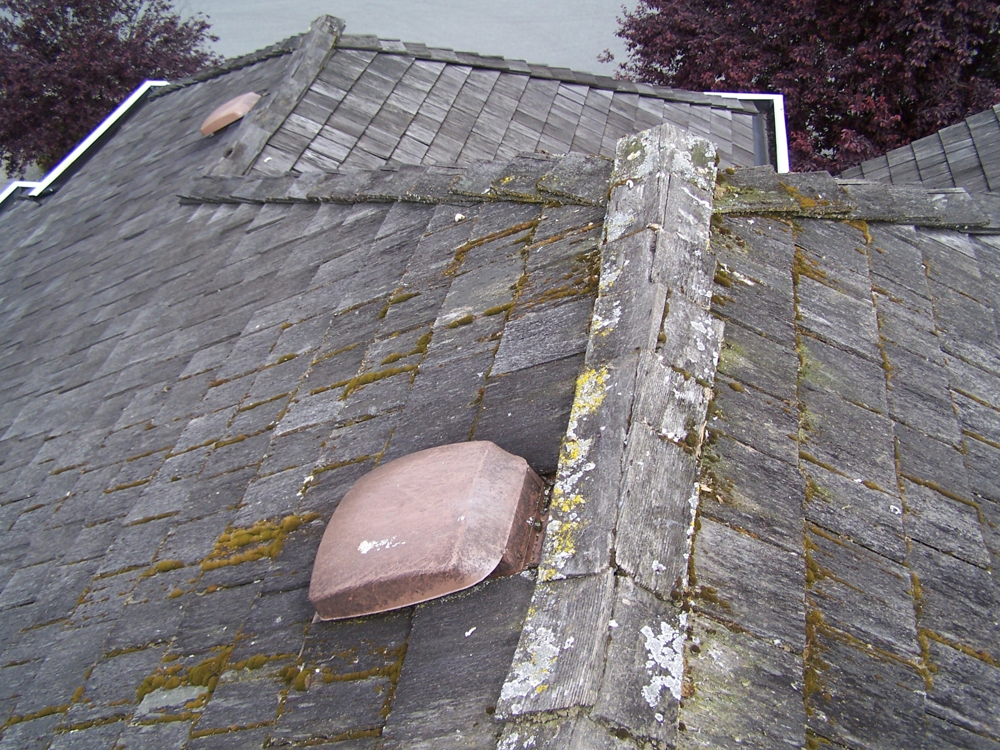 Surlang Roofing Ltd Surrey Bc Ourbis