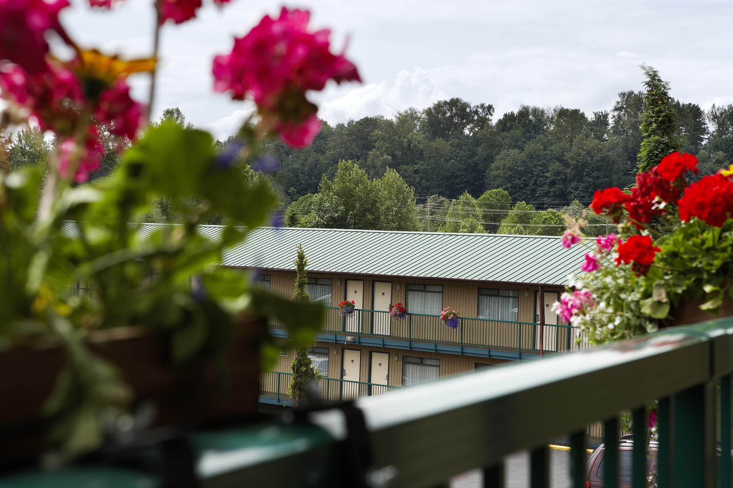 Best Western Bakerview Inn in Abbotsford: Balcony Upper Walk