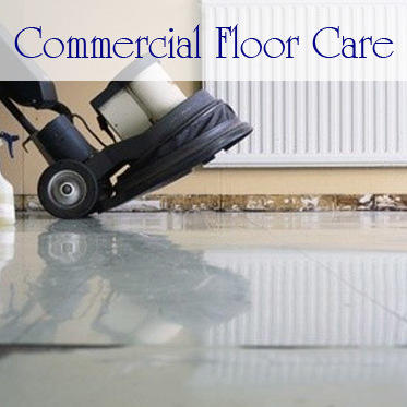 ALine's professional commercial floor care division and janitorial services