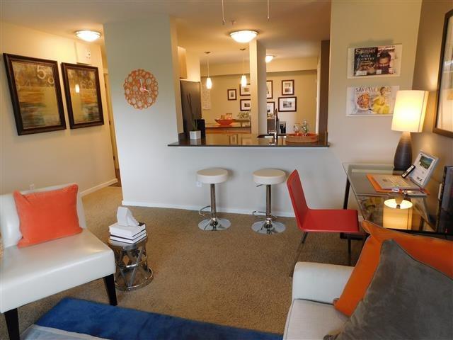 Tera Apartments image 1