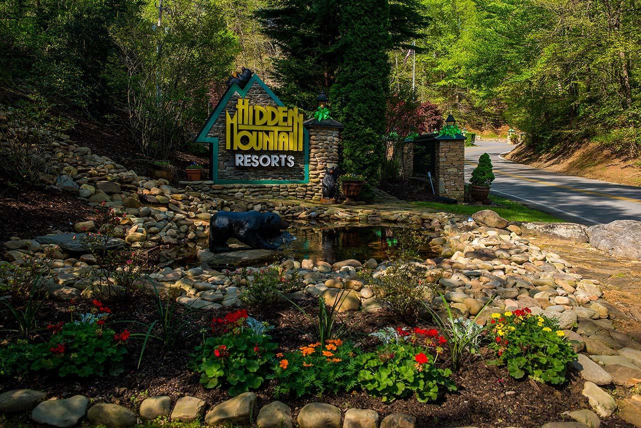 Hidden Mountain Resort image 0
