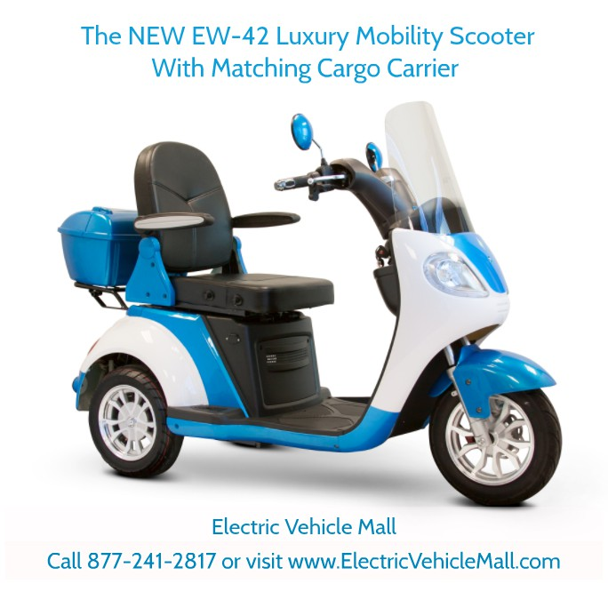Electric Vehicle Mall in Largo, FL, photo #19