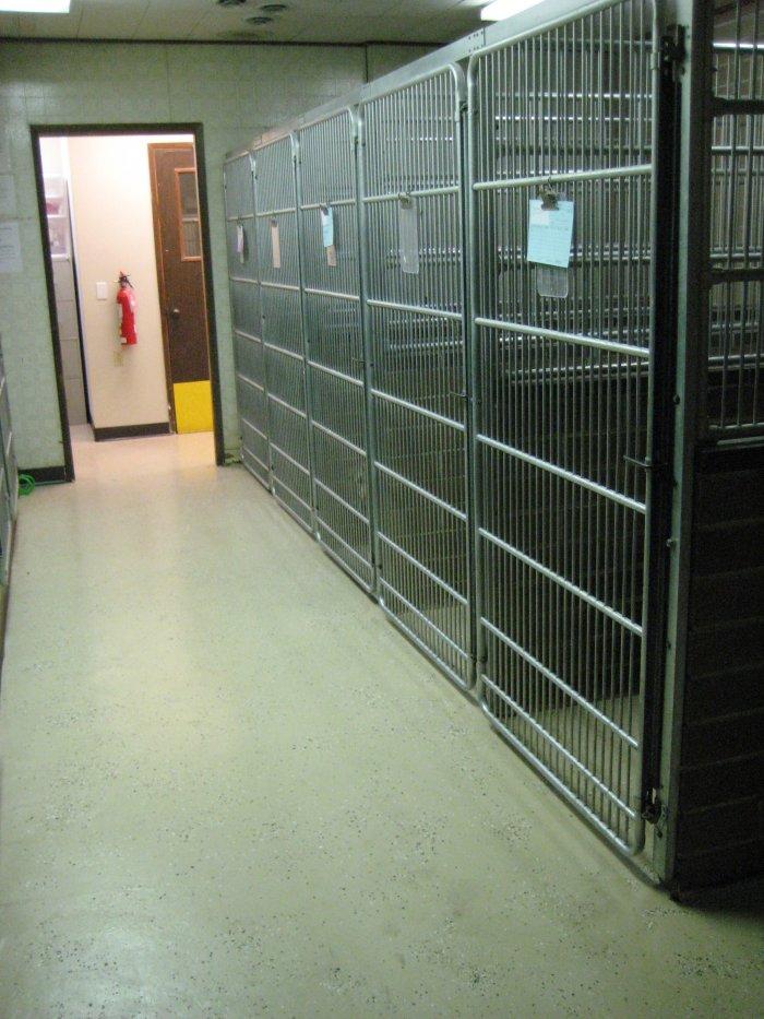 VCA Rose Hill Animal Hospital image 0