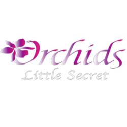 Orchids Little Secret Boutique