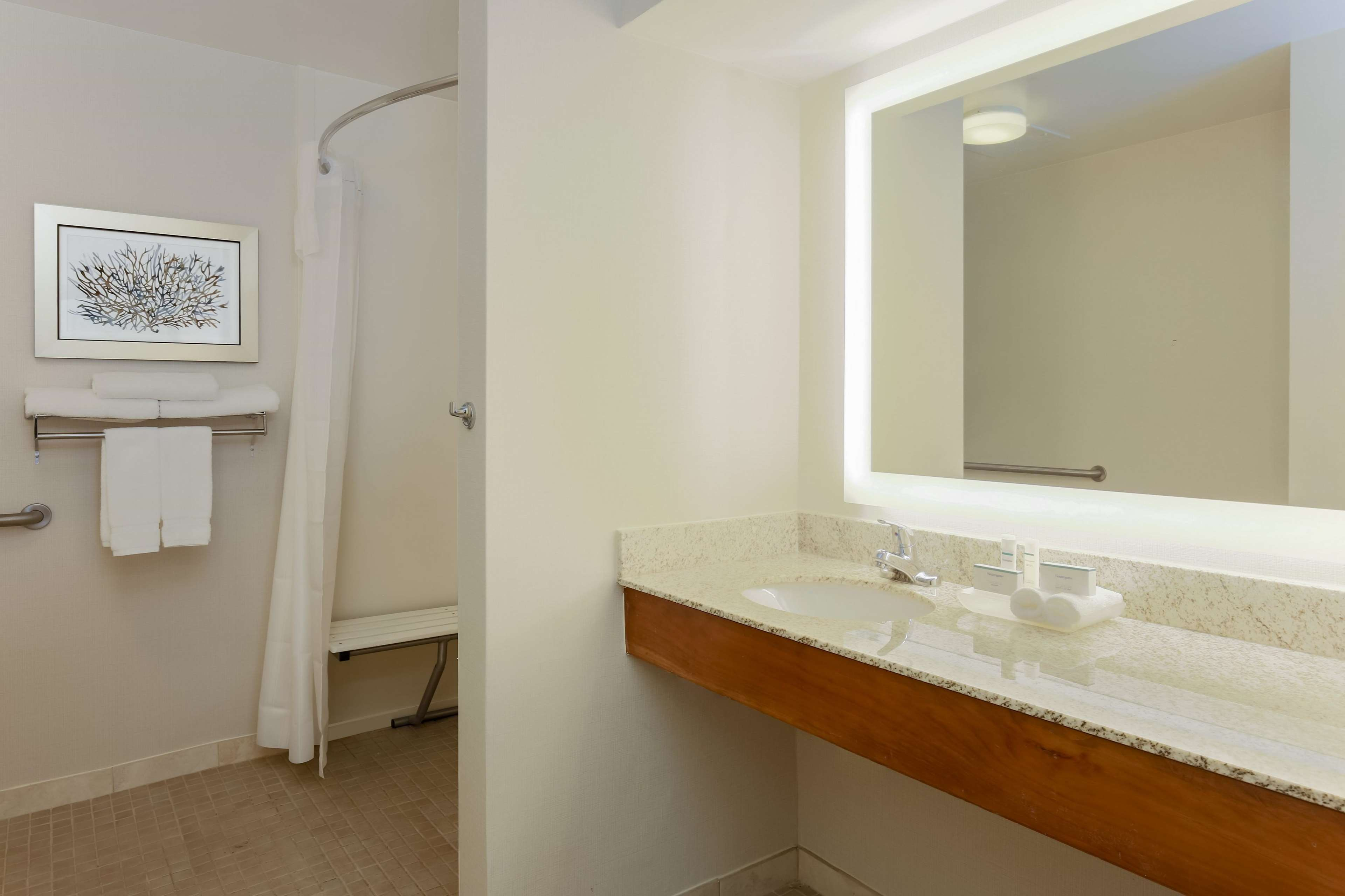 Homewood Suites by Hilton St. Petersburg Clearwater image 9