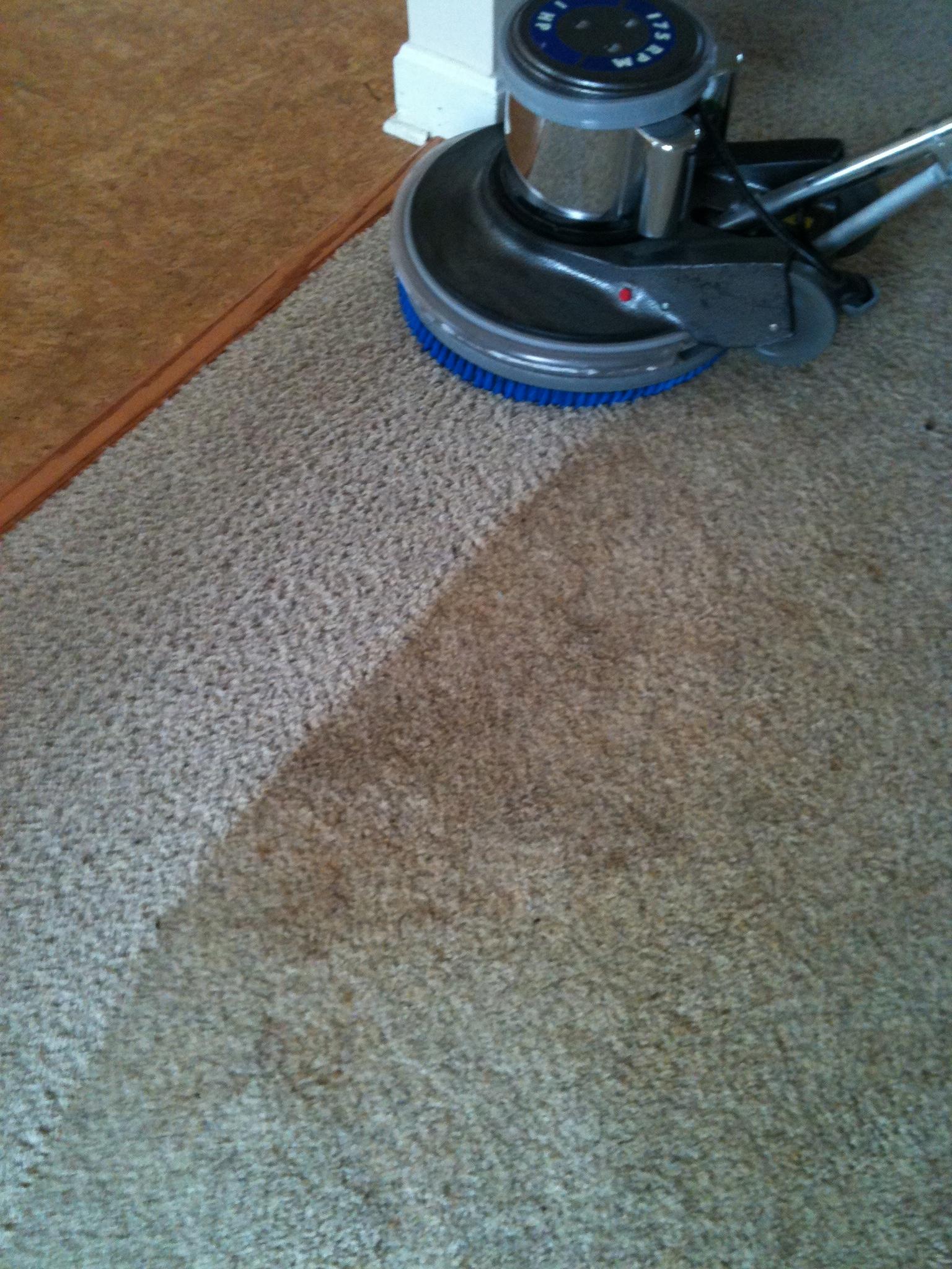 CitruSolution Carpet Cleaning image 1