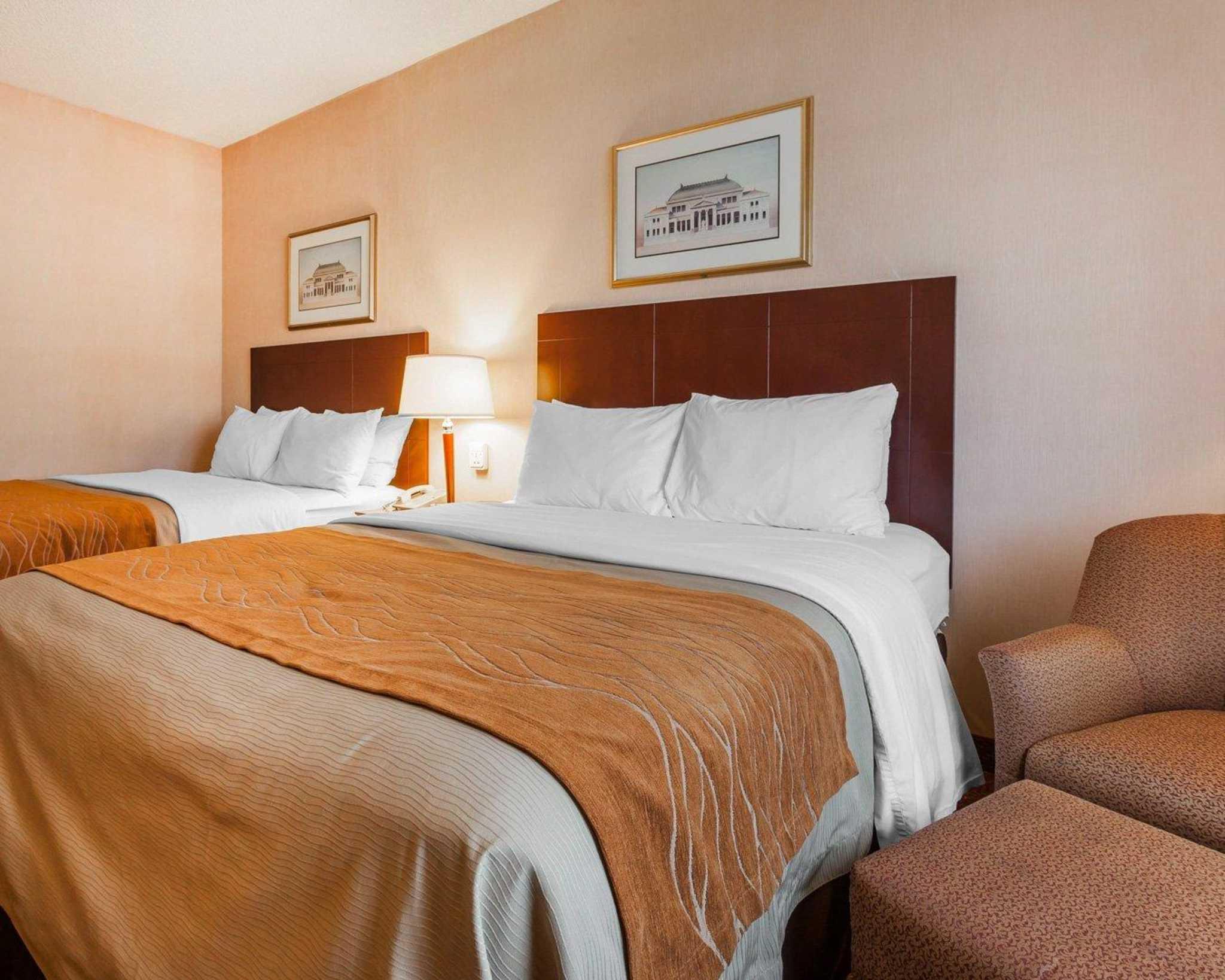Comfort Inn Kelso - Longview image 6