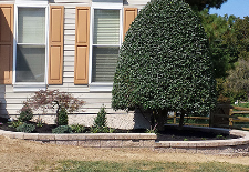 Kelly's Landscaping image 9