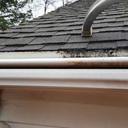 MN Gutter Cleaning Service Near Me image 5