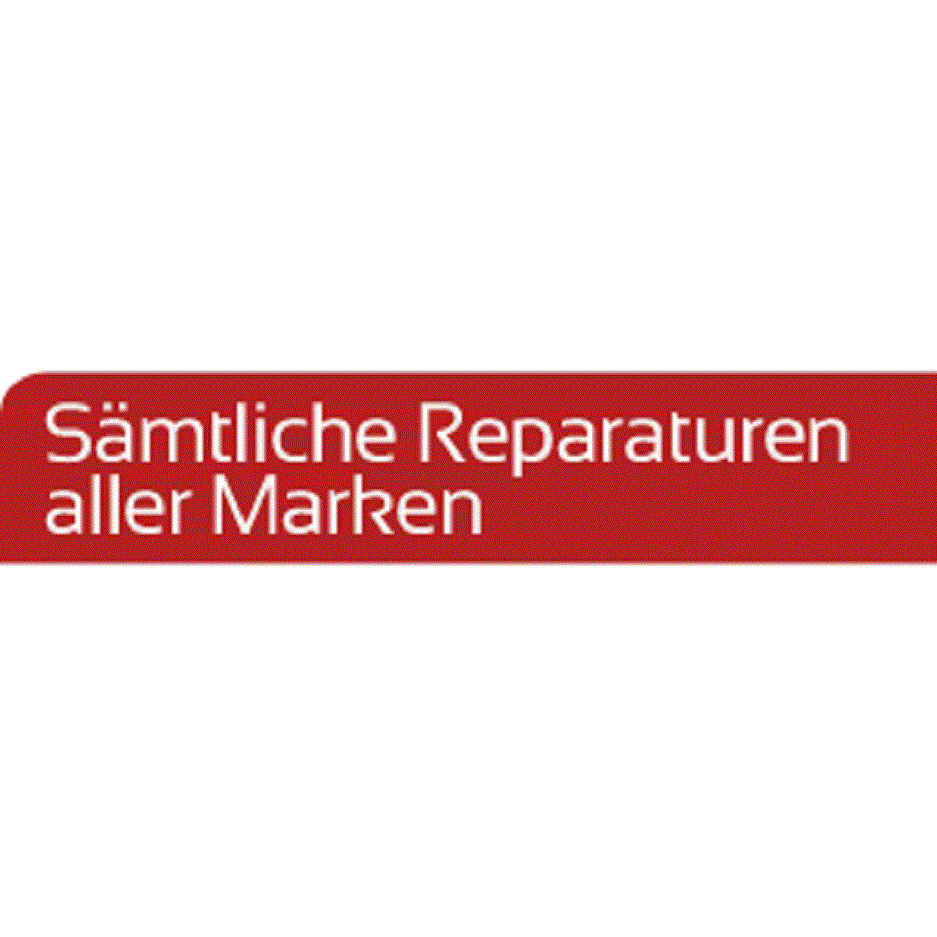 Automobile Service & Reparatur GmbH in Timelkam LOGO