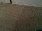 Discount Steamer Carpet & Upholstery Cleaning image 2