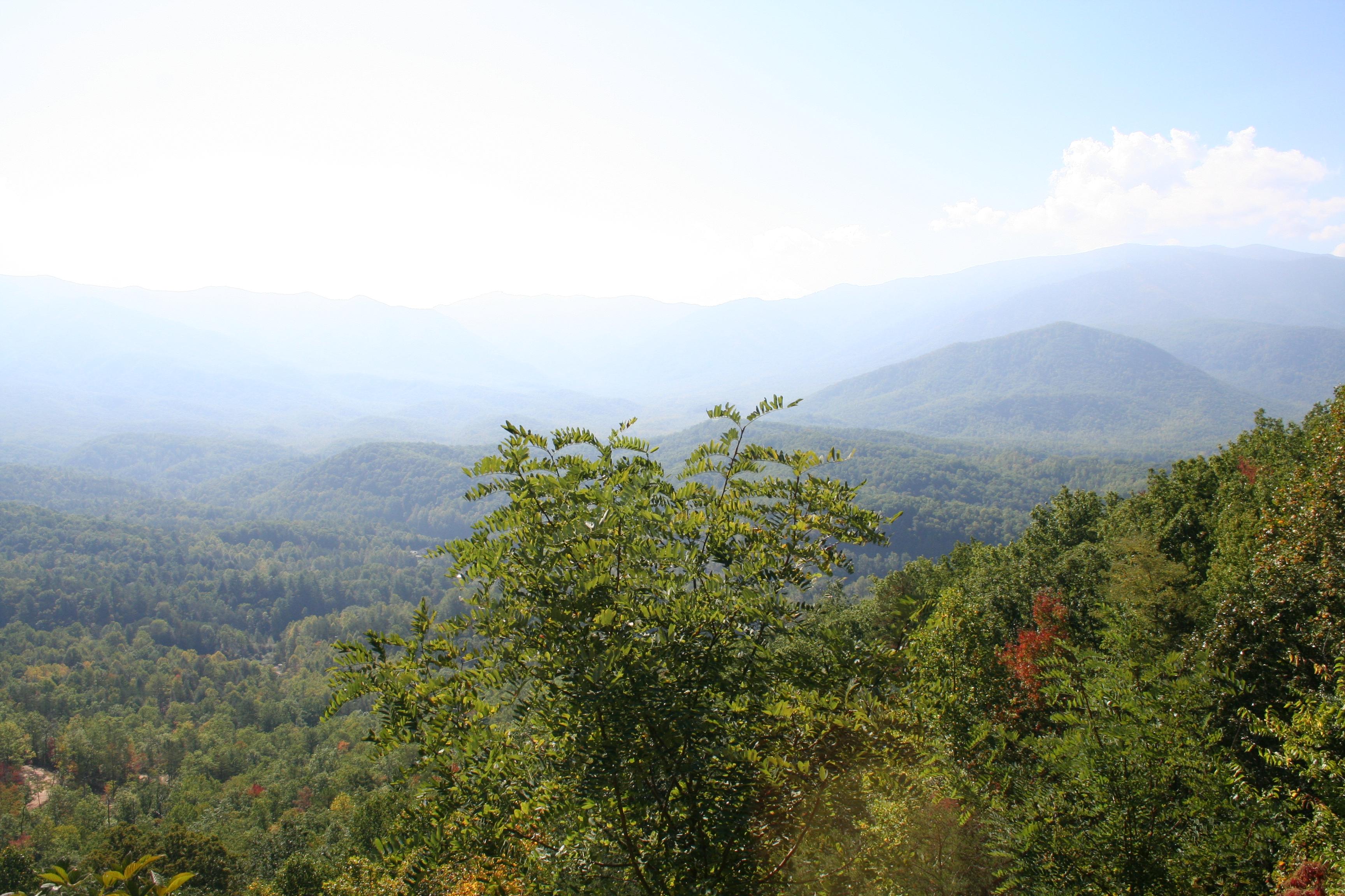 Newport / I-40 / Smoky Mountains KOA Journey image 20