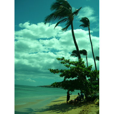 Aloha Ash Scattering image 4
