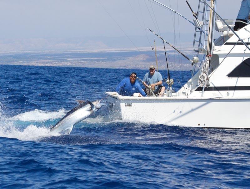 Ihu Nui Kona Sportfishing image 4
