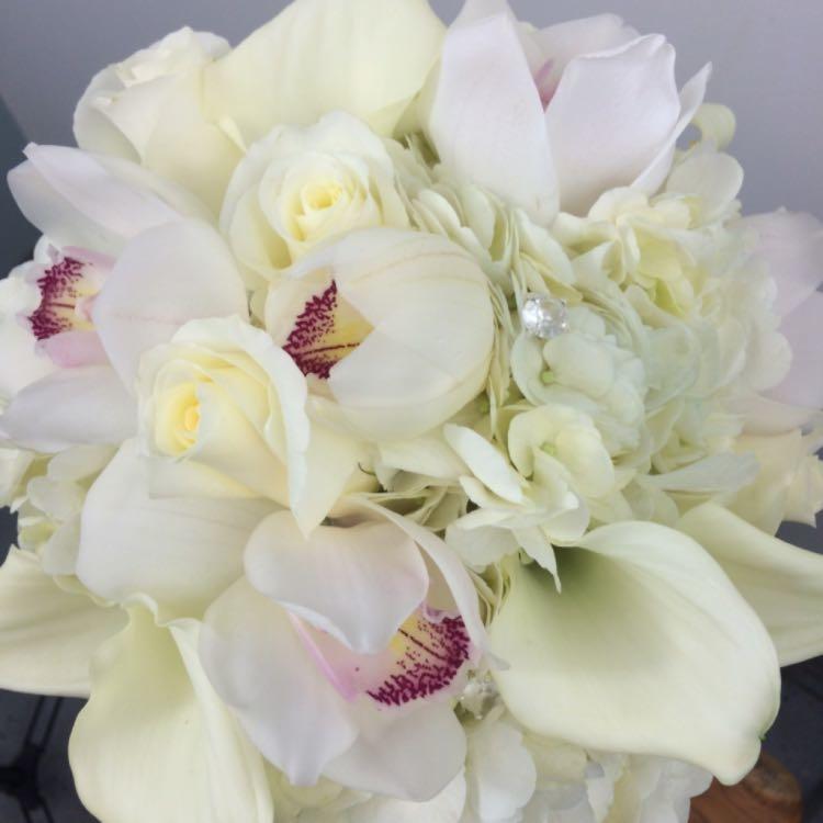 Floral Elegance image 66