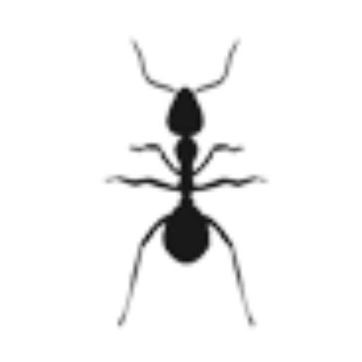 Action Pest Services image 0
