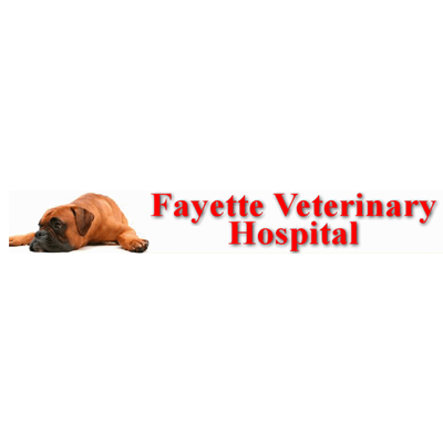 Fayette Veterinary Hospital image 0