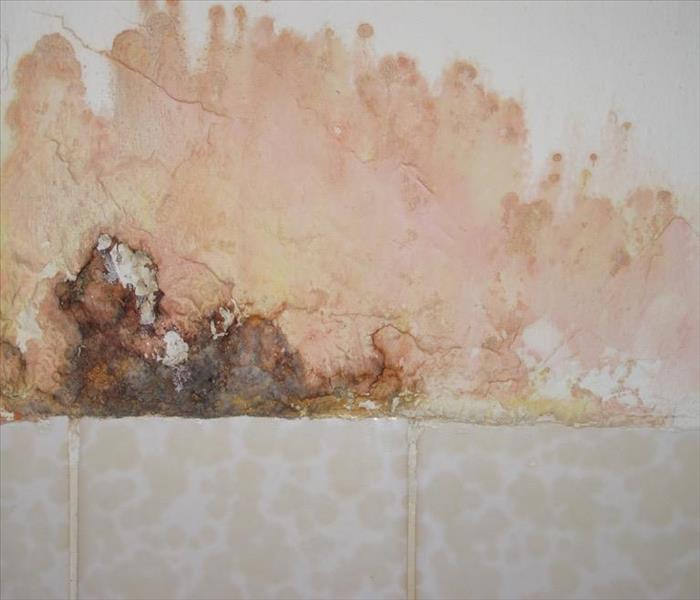 SERVPRO of South Miami image 0
