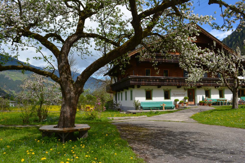 Frühstückspension Kassnerhof