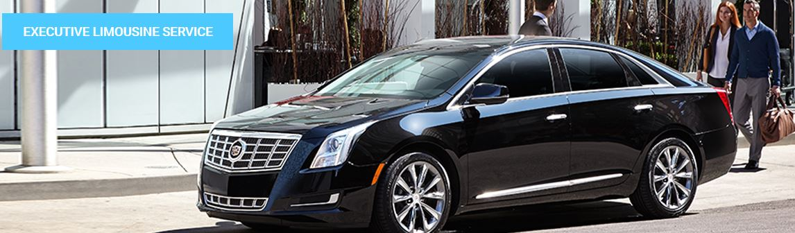 Accredited Limousine Service image 0